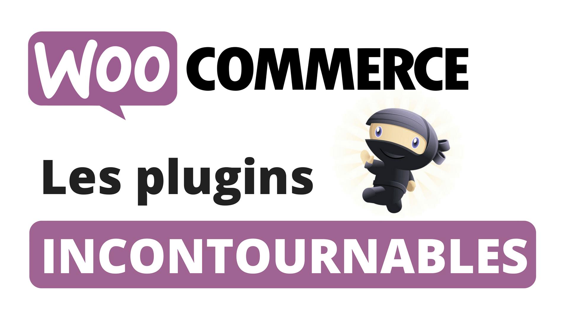 Les plugins incontournables à utiliser avec WooCommerce